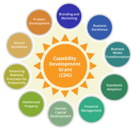 Capability Development Grant (CDG)